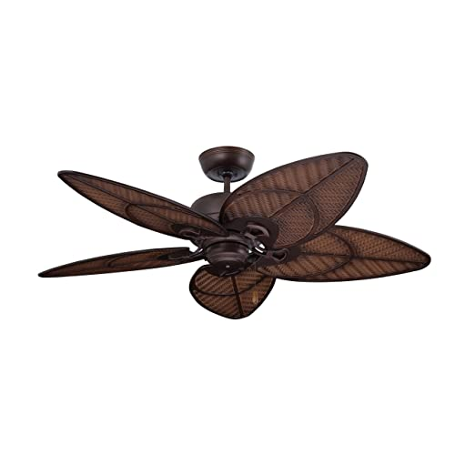 Outdoor Ceiling Fan with Light Wet Rated: Amazon.c