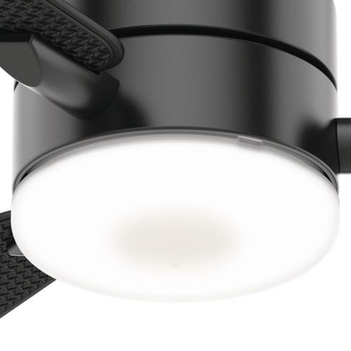"Casablanca® 54"" LED Paume Matte Black Indoor/Outdoor Ceiling Fan ."
