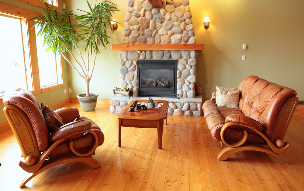 Natural living room with leather armchair
