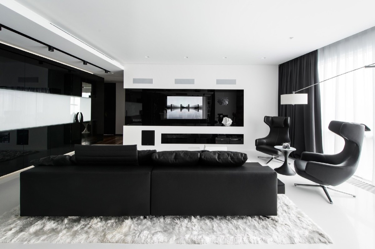 Stylish black and white living room