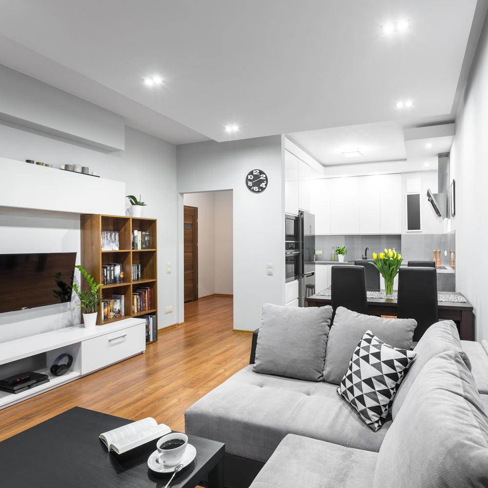 Mixed modern living room