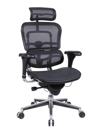 Ergonomic office chair Eurotech Mesh Ergonomic chair with headrest.  View office chair brochure WSUBJDV