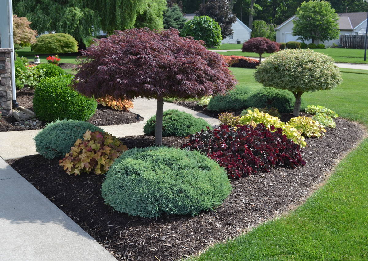 Landscaping ideas Landscaping idea for the outside of a sidewalk.  POGCTNS