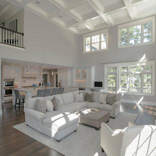 You need to see modern living room pictures and ideas before renovating.